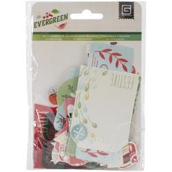 Evergreen Cardstock Die-Cuts & Transparencies - 1