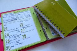 Project Life® Weekly Planner/Info Calendar Pages & Dividers 6x8 - 4