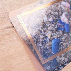 Forever Young  Project Life Photo Overlays 12 pkg - 5